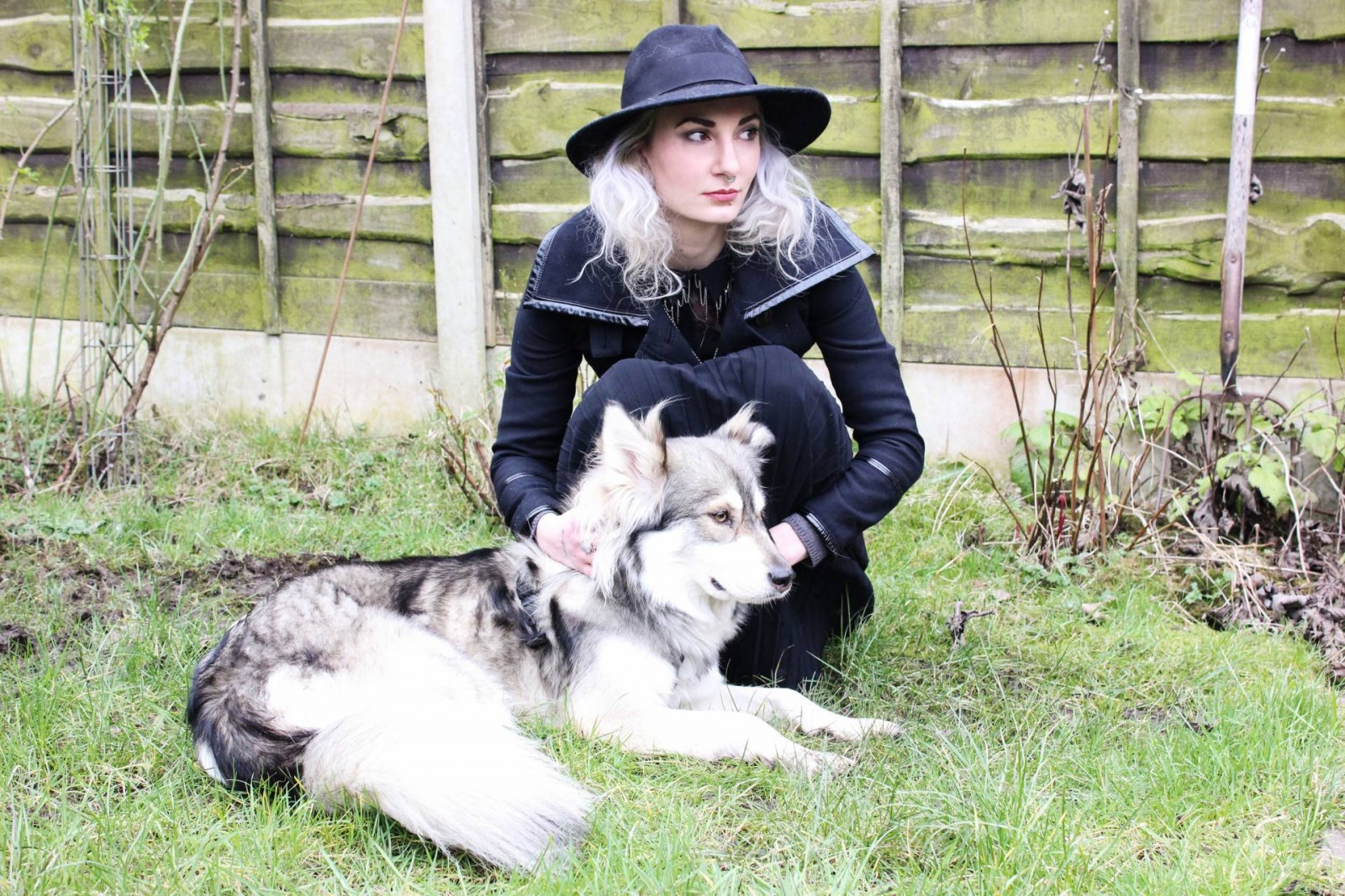 style blogger with wolf dog